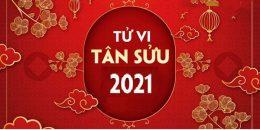 Nhận định tình hình năm mới 2021 theo Tử vi